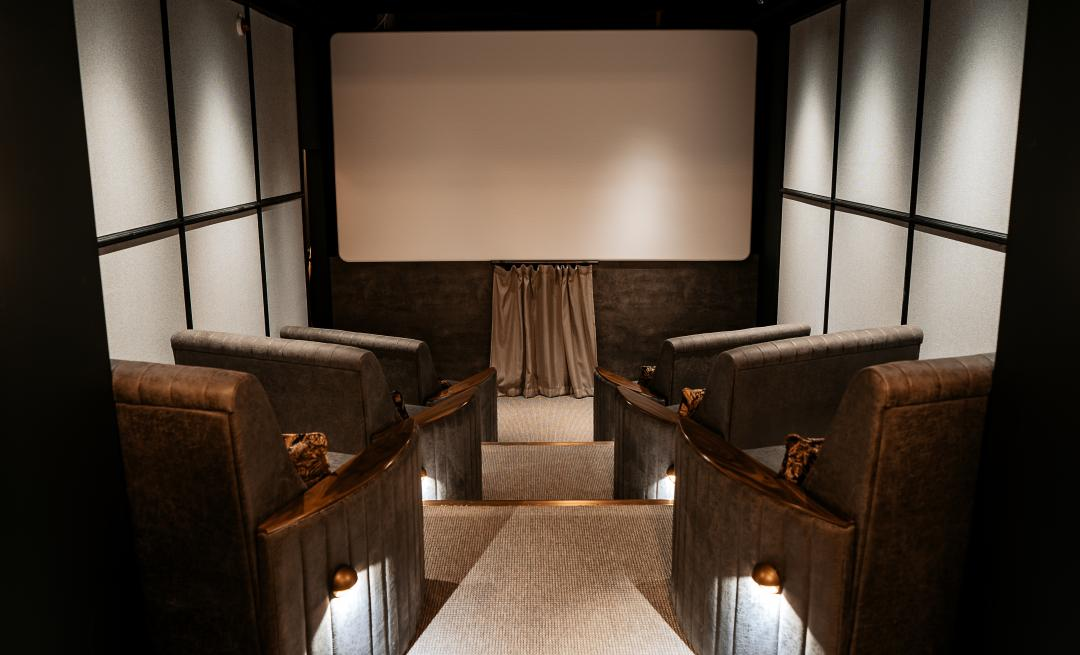 Director's screening room